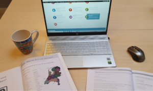 E-learning at Taalthuis